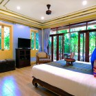 Gold Forest Room with Forest View